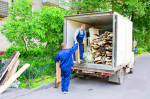 Вывоз строительного мусора, Переезд Плюс